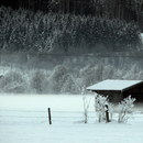 Austrian Winter